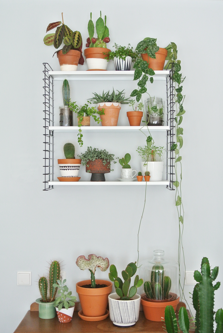 Plant shelf ideas decordove - Corner shelf for plants ...
